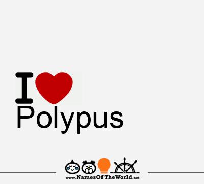 Polypus