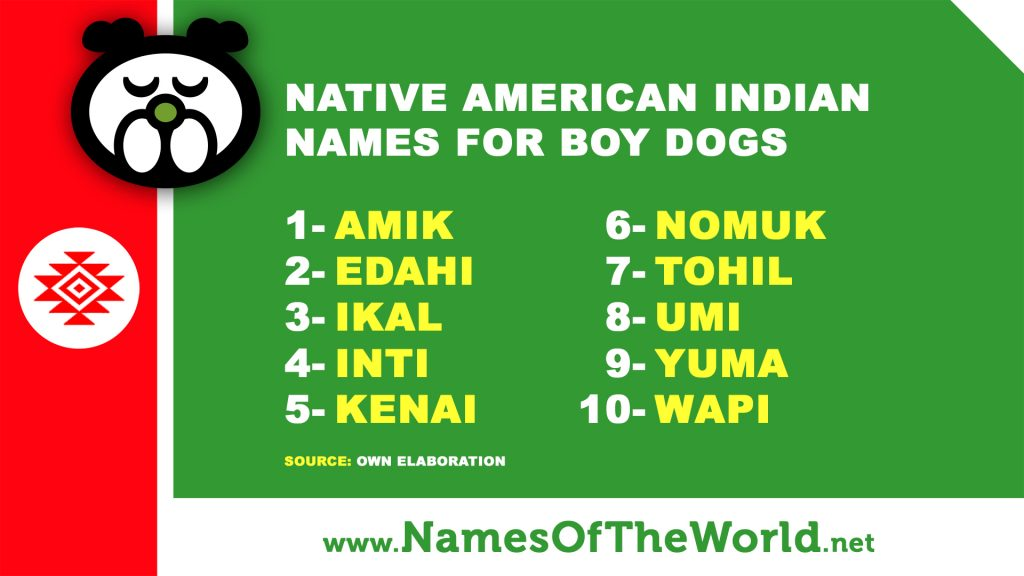 native american names and meanings male