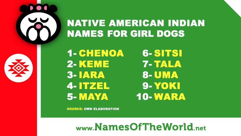 10 Native American Indian Names For Girl Dogs
